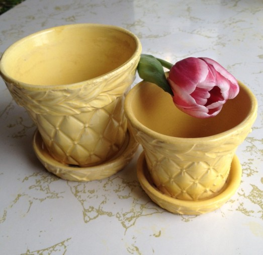 Yellow McCoy Planters